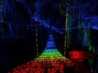 Scanner Sombre - Imagen