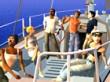 Demostración (Los Sims 2: Náufragos)