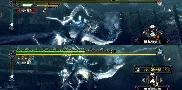 Monster Hunter 3 (Nintendo Wii)