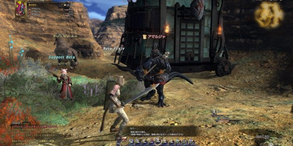 Final Fantasy XIV (PlayStation 3)