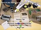Imagen NatGeo Quiz! Wild Life (Xbox 360)