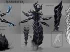 Elder Scrolls Online - Imagen Mac