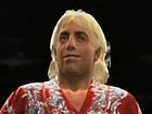 V�deo WWE 2K14, Spot