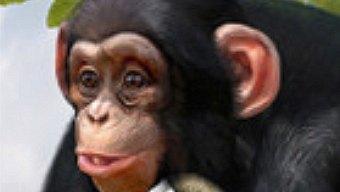 Análisis de Zoo Tycoon