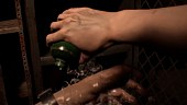 "Video Resident Evil 7 - Vol.5 ""Survival"""