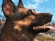 Alb�ndiga de Fallout 4 gan� el premio al Mejor perro de videojuego de 2015
