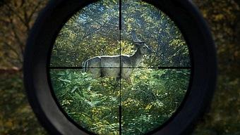 Video theHunter: Call of the Wild, theHunter Call of the Wild: Tráiler de Anuncio