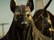 Contenido Post-lanzamiento / Pase de Temporada (Assassin's Creed: Origins)