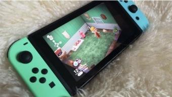 Empresa de artículos para el hogar abre consultoría de diseño de interiores para Animal Crossing