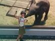 Tráiler de anuncio de Planet Zoo, lo nuevo de los autores de Jurassic World Evolution