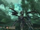 Oblivion: Shivering Isles