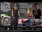 Pantalla Sleeping Dogs