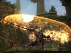 Kingdoms of Amalur Reckoning - PS3