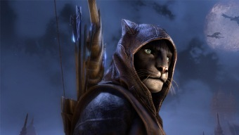 Director creativo de The Elder Scrolls Online reconoce que los estudios suelen equivocarse