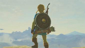 Zelda: Breath of the Wild, Caza y Combates