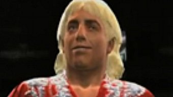 Video WWE 2K14, Spot